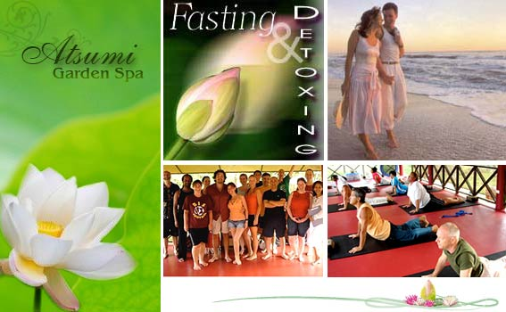 Atsumi Healing Center Natural Therapy-Education Center Retreat Phuket Thailand