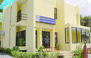 Ao Chalong Animal Hospital - Veterinary Pet Care Services Phuket Thailand
