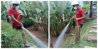 De. Land Housing Service - Pesticide Control Extermination Services Phuket Thailand