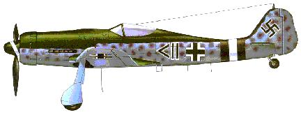 FW 190D Long Nose