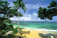Beautiful Singh Cape Beach on Tropical Phuket Island Thailand