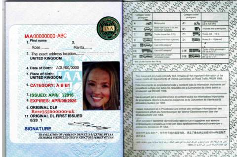 how to get the international driving licence