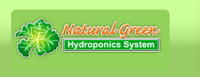Natural Green Hydroponics - Farm Fresh Vegetables Sales Phuket Thailand