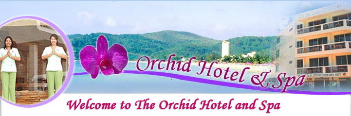 Orchid Hotel Spa Seaside Resort Spa Hotel Patong Beach Phuket Thailand