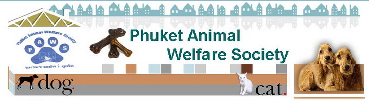 Phuket Animal Welfare Society (PAWS) Stray Dogs Cats Care Phuket Thailand