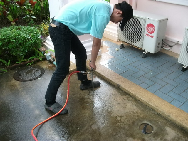 Pest Guard Exterminating Termites, Cockroaches, Ants, Insects Pests Services in Phuket