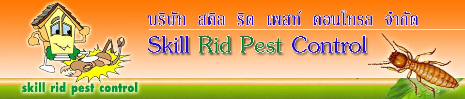 Skill Rid Pest Control Safe Bait Box Termite Extermination Services Phuket